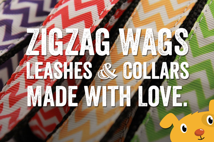 Win a leash and collar from ZigZag Wags!