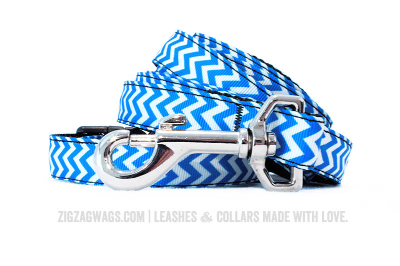 Blue Dog Leash and Collar Set from ZigZag Wags