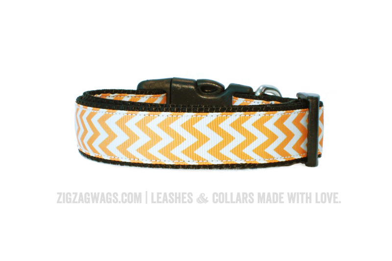 Yellow Dog Collar from ZigZag Wags