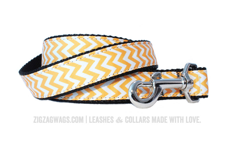 Yellow Dog Leash from ZigZag Wags
