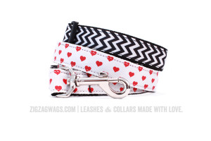 Dog Collars and Leashes from ZigZag Wags