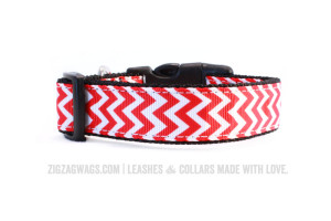 Red Dog Collar from ZigZag Wags
