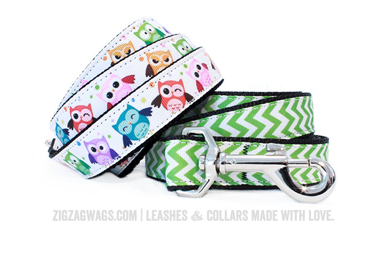Leashes from ZigZag Wags