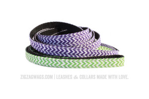 Purple and Green Leashes from ZigZag Wags