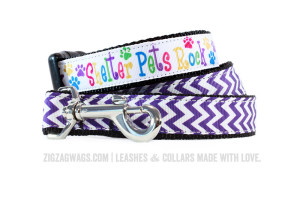 Shelter Pets Rock Design Dog Collar and Purple Leash