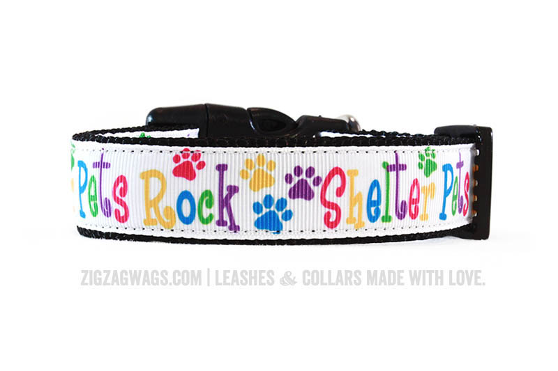 Dog Collar for Shelter Pets