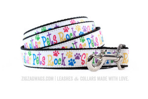 Dog Leash for Shelter Pets