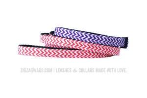 Purple Dog Collar and Red Leash from ZigZag Wags