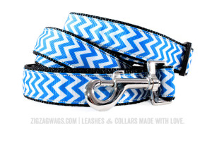 Blue Dog Collar and Leash Set from ZIgZag Wags