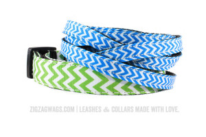 ZigZag Wags True Blue Small Leash and Grass Green Collar