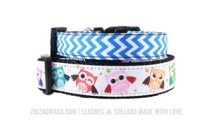 Blue and Patterned Dog Collars from ZigZag Wags