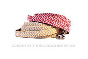 Yellow and Red Dog Leashes from ZigZag Wags