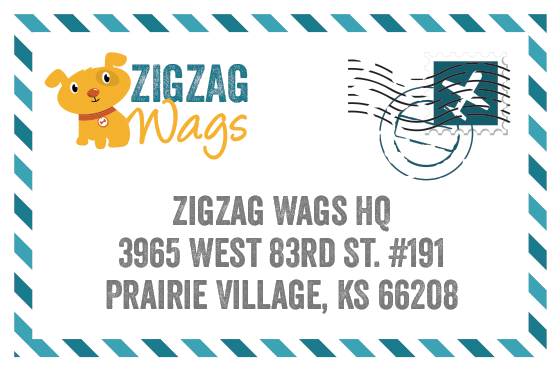 Contact ZigZag Wags